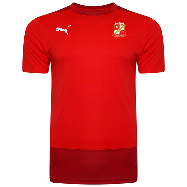 20/21 Puma Adult Training Tee Red/Chilli